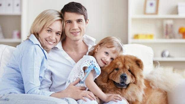Wills & Trusts dog-young-family Direct Wills Woodham Ferrers